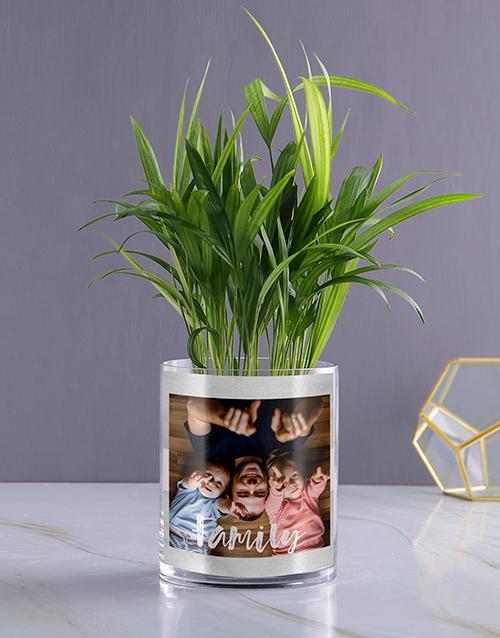 Personalised Family Areca Palm