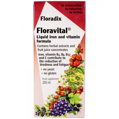 Floradix Floravital Liquid Iron Gluten Free