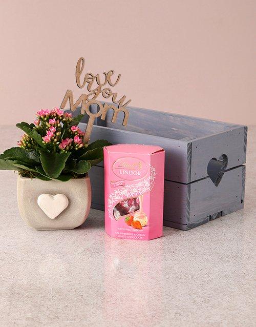 Pink Pleasures Kalanchoe Crate