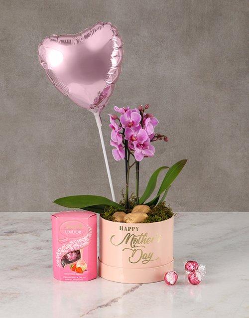 Pretty In Pink Orchid Hamper