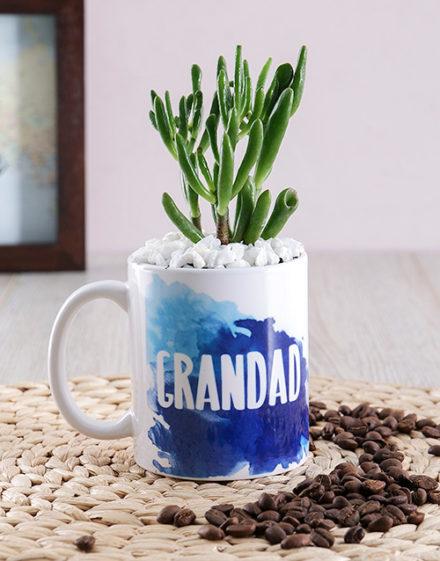 fathers-day Grandad Succulent Mug Gift
