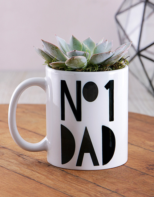 fathers-day No1 Dad Succulent Mug