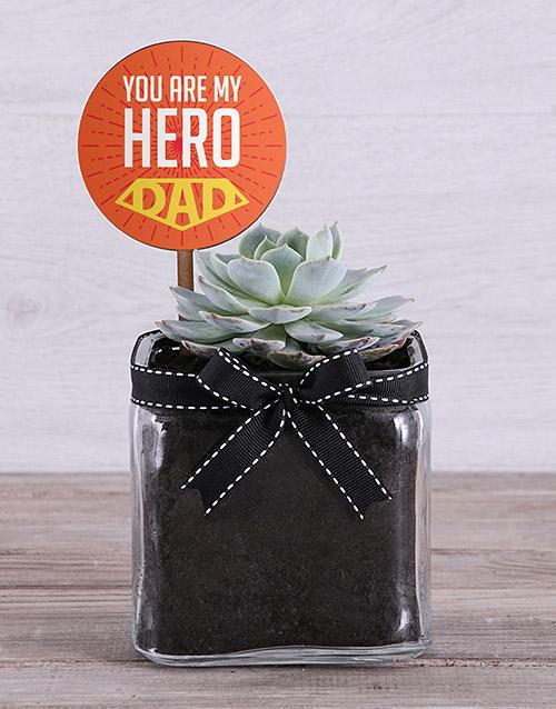 fathers-day Mini Succulent Delight