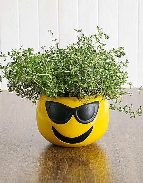 birthday Herbs in Sunglasses Emoji Pot