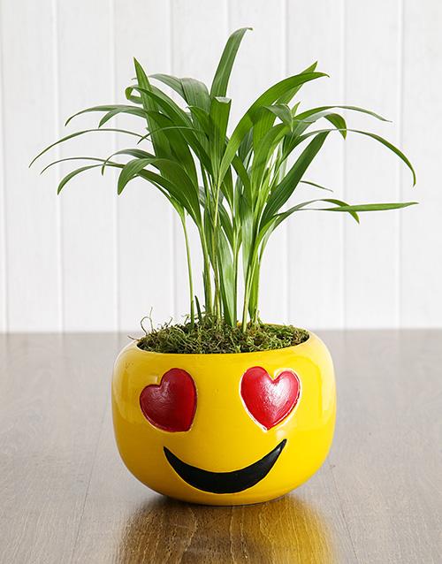 birthday Love Palm in Heart Eyes Emoji Pot