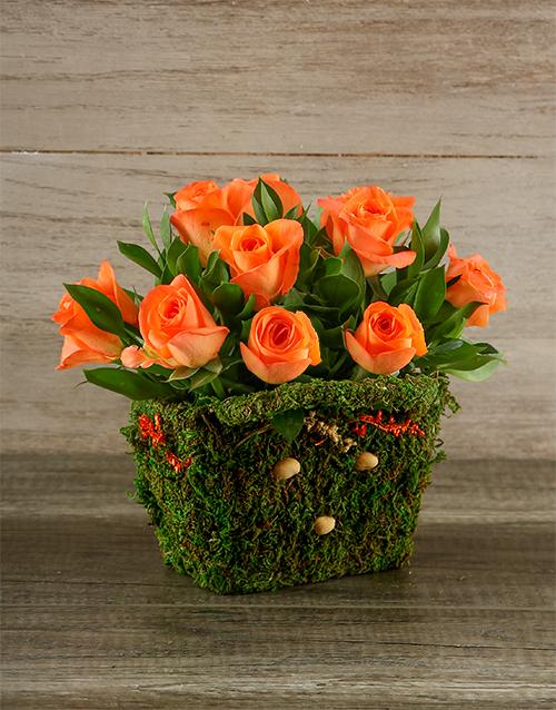 roses Orange Roses in Moss Basket