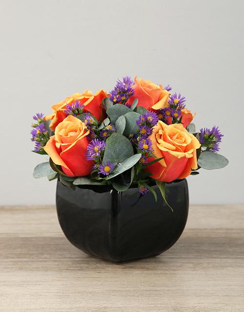 roses Cherry Brandy Roses in Black Glazed Vase