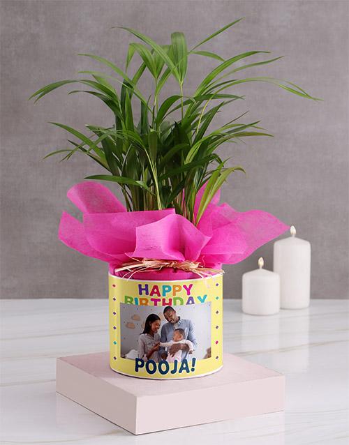 birthday Personalised Birthday Areca Bamboo
