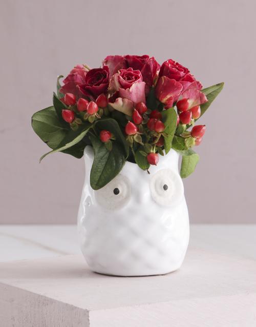 roses Owl Pot Abracadabra Roses
