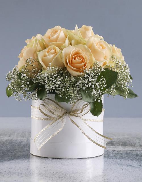 roses Peach Roses In White Round Box